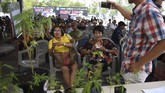 Warga duduk mengantre untuk mendapatkan resep pengobatan minyak ganja pada hari kedua festival ganja Pan Ram di kota Buriram, 20 April 2019. (AFP/Lillian SUWANRUMPHA)
