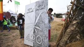 FOTO: Pesta Mariyuana dalam Festival di Thailand