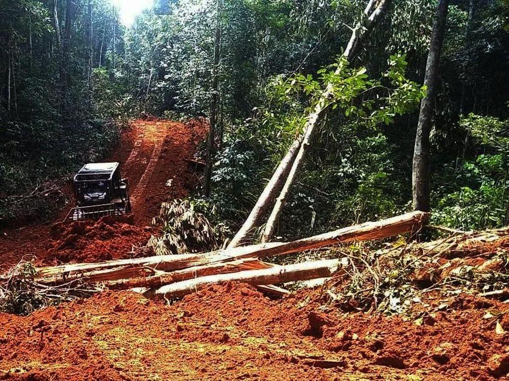 Jalan ini akan menghubungkan Desa Batu Lapis dengan Desa Beginci Darat di Kecamatan Hulu Sungai, Kabupaten Ketapang. Pool/Kodam XII/Tpr.