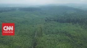 VIDEO: Kolaborasi Menjaga Hutan Lestari (1-5)