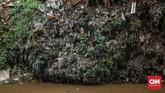 Forum Ekonomi Dunia pada 2016 menyatakan ada lebih dari 150 juta ton plastik berada di lautan. Padahal plastik memerlukan waktu puluhan bahkan ratusan tahun untuk bisa terurai. Plastik bakal terakumulasi terus dan terus di laut. (CNN Indonesia/Bisma Septalisma)