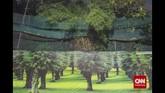 Luas hotan kota Jakarta berdasarkan SK Gubernur mencapai 149,76 ha, Luas tersebut masih terlalu timpang jika dibandingkan dengan luas wilayah DKI Jakarta yakni 66.233 hektare dan jika dipresentasekan hanya sekitar 0,23 persen. (CNN Indonesia/Adhi Wicaksono)