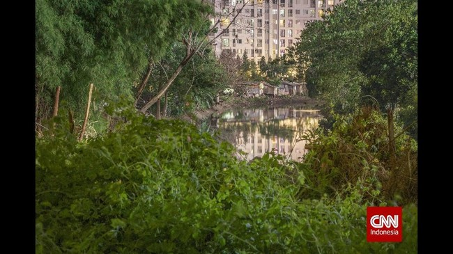 Pengembangan hutan kota menjadi isu penting seiring dikeluarkannya UU No. 26 Tahun 2007 tentang Penataan Ruang, yaitu pasal 29 ayat 2 dijelaskan bahwa proporsi hutan kota minimal 10 % dari wilayah perkotaan (PP No. 63 Tahun 2002 tentang hutan kota). (CNN Indonesia/Adhi Wicaksono)