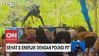 VIDEO: Sehat & Enerjik dengan Pound Fit