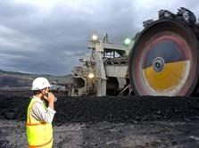 Wabah Corona Mendunia, Proyek Gasifikasi Bukit Asam Molor