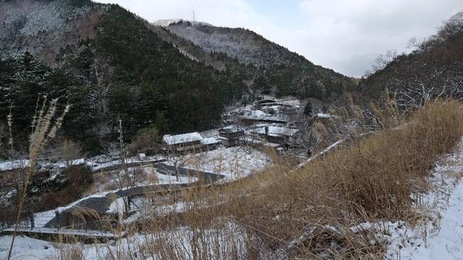 Nagoro, sekitar 550 kilometer di barat daya Tokyo, telah dikenal sebagai desa boneka setelah Tsukimi Ayano mulai menempatkan orang-orangan sawah di jalan untuk menyuntikkan kehidupan ke desanya yang kekurangan penduduk.