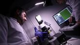 Kepala peneliti Eli Erturk menjelaskan ia dan tim mengembangkan teknik untuk membuat organ transplantasi seperti otak dan ginjal tembus pandang. (REUTERS/Michael Dalder)