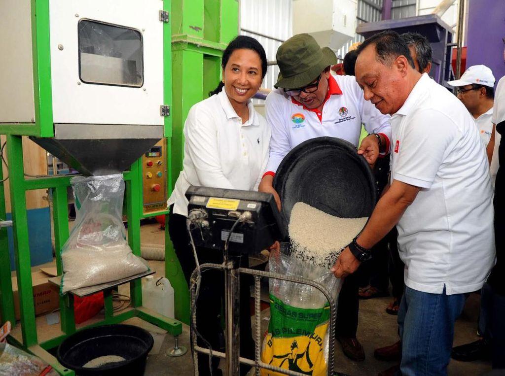 Menteri BUMN Rini M. Soemarno bersama Direktur Utama PT Bank Tabungan Negara (Persero) Tbk. Maryono meminjau mesin penggilingan padi di Unit Penggilingan Padi (Rice Milling Unit/RMU) Kecamatan Kiarapedes, Purwakarta, Jumat (26/4).