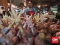 Tren Turun Harga Ayam di Pusat Informasi Harga Pangan