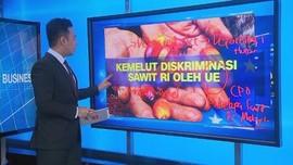 VIDEO: Kemelut Diskriminasi Sawit RI oleh Uni Eropa