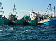 China Curi Ikan di Natuna, RI Impor 40% Ikan Beku dari China