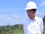 Hattrick Kejengkelan Jokowi, Ada Apa Memang?