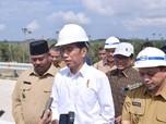 Hari Ini Jokowi Cek 4 Lokasi Calon Ibu Kota Baru di Kalteng