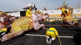 Pawai Gajah Hormati Raja Thailand Sehari Usai Pelantikan