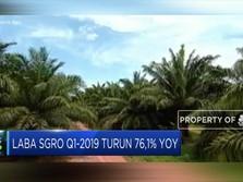 Pendapatan Sampoerna Agro Naik 13,42%