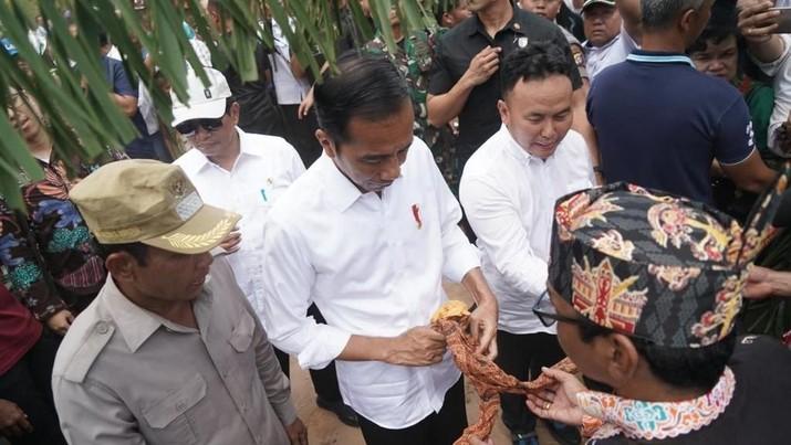 Jokowi Tegaskan Lagi: Ibu Kota Pindah ke Kalimantan!