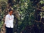 Brasil Pindahkan Ibu Kota Selama Lima Tahun, Indonesia?