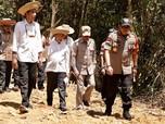 Alasan Jokowi Cek Calon Ibu Kota Baru RI: Biar Dapat Feeling