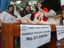 Ultimatum Mentan: Harga Telur Ayam Ras Maksimal Rp 23 Ribu/Kg