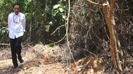 Jokowi Targetkan Semua Tanah di Gresik Bersertifikat 2024