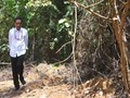 Kasasi Ditolak, Jokowi Divonis Melawan Hukum Kasus Karhutla