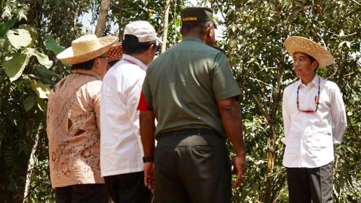 Pemindahan ibu kota dari Jakarta ke salah satu lokasi di Kalimantan membutuhkan anggaran yang tidak sedikit