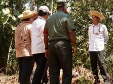 Aset di Thamrin Cs Dijual untuk Bangun Istana di Kalimantan