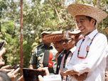 Ibu Kota RI di Gunung Mas, Kalimantan Tengah, Pak Jokowi?