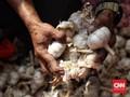 Marak Wabah Corona, Pemerintah Klaim Stok Bawang Putih Aman