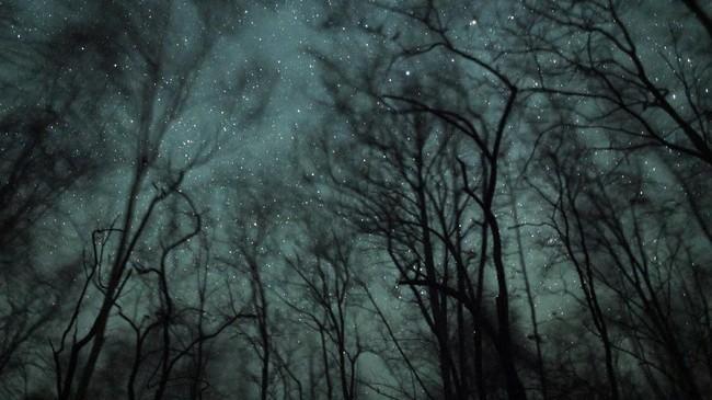 Bintang-bintang di langit di atas cagar alam Shwe Settaw di daerah Magway. (Ye Aung THU / AFP)