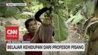 VIDEO: Belajar Kehidupan Dari Profersor Pisang