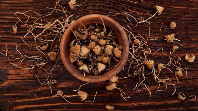 Denver Perbolehkan Pemakaian 'Magic Mushroom'