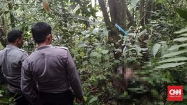 Petugas KPPS Tewas Membusuk di Hutan Usai Hilang 5 Hari