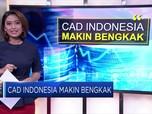 CAD Indonesia Makin Bengkak