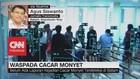 VIDEO: Wabah Cacar Monyet, Menlu Imbau WNI Waspada