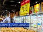 Harga Telur Ayam Mulai Merangkak Naik