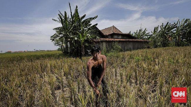 Bikin Pusing Pejabat Desa, Laporan Dana Desa akan Dipermudah
