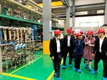 Inalum Lirik Kerja Sama Rp 25,6 T dengan Pabrik Baterai China