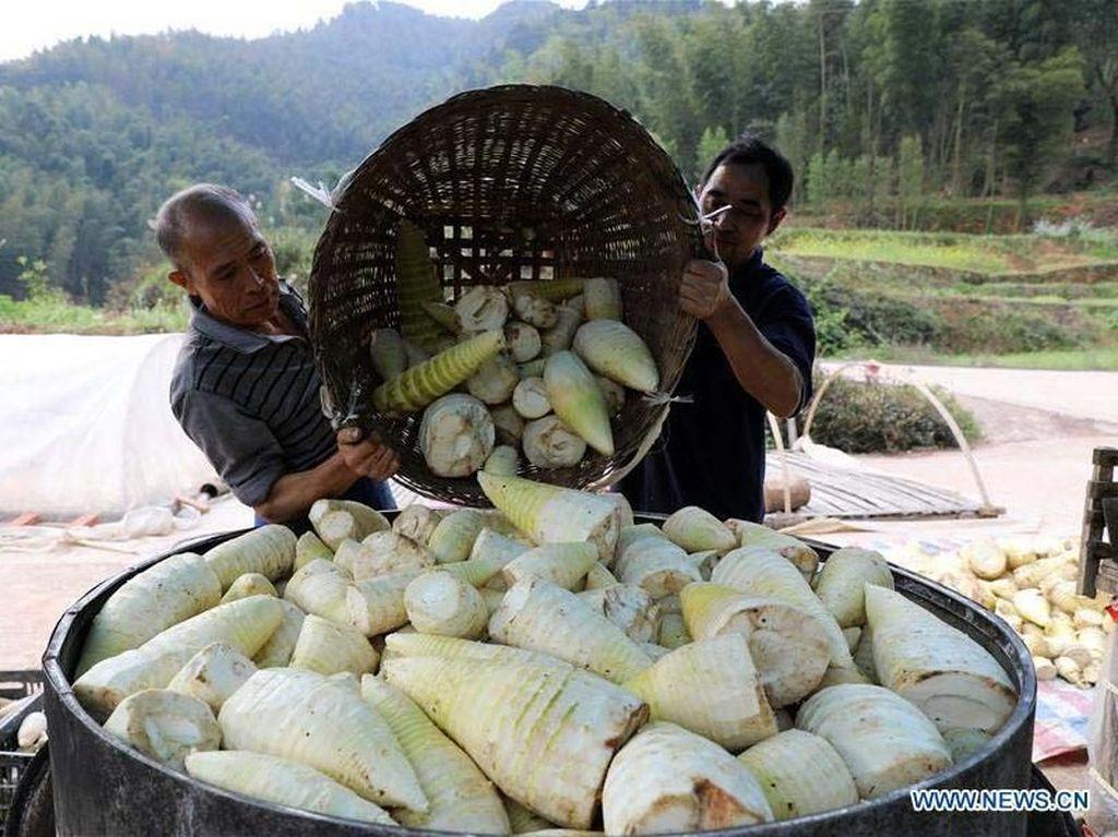 Penduduk bisa mengirimkan produk pertaniannya lebih mudah dan menghasilkan lebih banyak pengunjung di daerah tersebut. Istimewa/Xinhuanet/Yang Wenbin.
