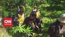 VIDEO: Komunitas Penjaga Hutan Lereng Gunung Lemongan