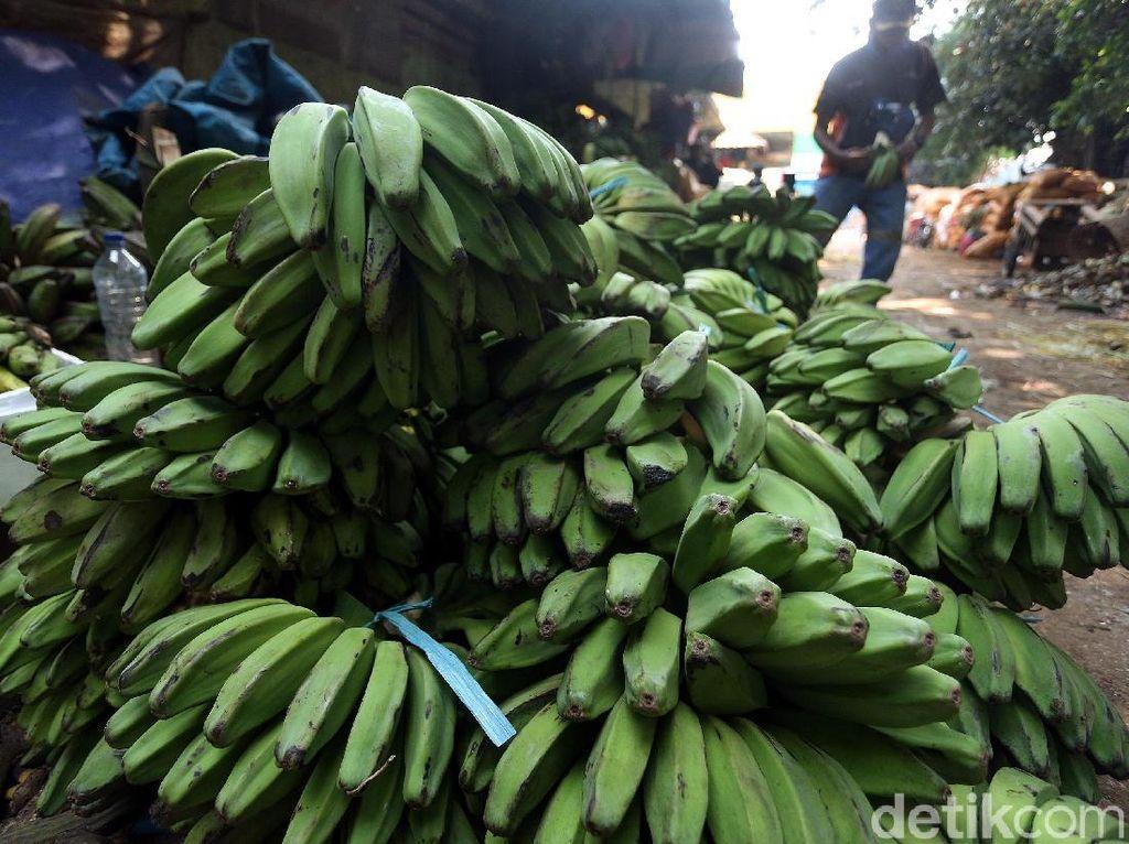 Tak hanya pisang yang sudah matang, pisang mentah pun juga dijajakan di pasar tersebut,