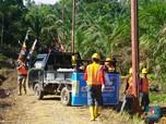 Tembus Kebun Lewati Hutan, Demi Listriki Desa di Kalbar