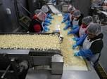 Cuan di Perang Dagang, Begini Wajah Industri Bawang Putih AS