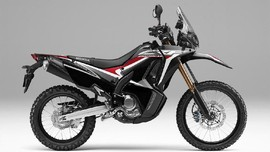 Honda Rilis Dua Motor dengan Warna Baru