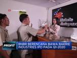 BNBR Berencana bawa Bakrie Industries IPO pada Q1-2020