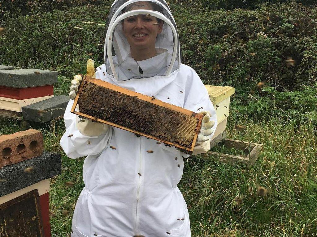 Berani yah. Headey terlihat memanen madu. Ditangannya tampak sarang lebah dengan isian madu. Foto: Instagram@iamlenaheadey