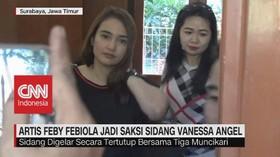 VIDEO: Artis Feby Febiola Jadi Saksi Sidang Vanessa Angel