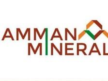 Batal Join Freeport, Amman Mineral Ubah Rancangan Smelter