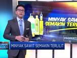 Pasar Ekspor Sawit Makin Sulit