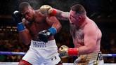 Anthony Joshua ditantang Andy Ruiz Jr pada perebutan gelar juara dunia kelas berat WBA Super, IBF, WBO dan IBO di Madison Square Garden, New York, Sabtu (1/6) malam waktu setempat. (Reuters/Andrew Couldridge)